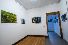 Galerie-Bachhouse-9519
