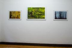 Galerie-Bachhouse-9520