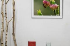 Galerie-Bachhouse-9529
