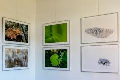 Galerie-Backhouse-9558